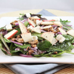 Apple, Red Onion, Candied Walnuts & Goat Cheese Salad + Balsamic Honey Vinaigrette